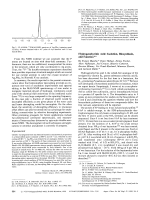 Hydrogenobyrinic Acid  Isolation  Biosynthesis  and Function.