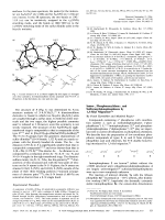Imino-  Phosphoranylidene-  and Sulfuranylidenephosphanes by 1 3-Silyl Migration.