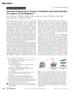 Interfacial Engineering by Proteins  Exfoliation and Functionalization of Graphene by Hydrophobins.