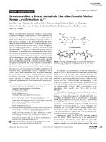 Leiodermatolide  a Potent Antimitotic Macrolide from the Marine Sponge Leiodermatium sp.