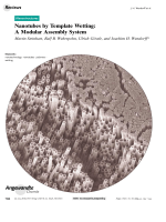 Nanotubes by Template Wetting  A Modular Assembly System.