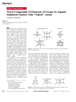 Novel Compounds of Elements of Group 14  Ligand-Stabilized Clusters with УNakedФ Atoms.