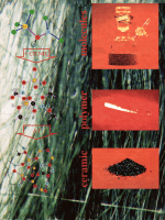 Novel High-Performance CeramicsЧAmorphous Inorganic Networks from Molecular Precursors.
