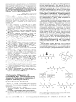 N-Perbenzylation of Oligopeptides with P4-Phosphazene Base; A New Protecting-Group Technique for Modification and Solubilization of Peptides in Apolar Organic Solvents.