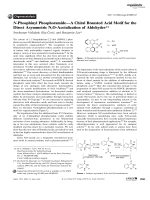 N-Phosphinyl PhosphoramideЧA Chiral Brnsted Acid Motif for the Direct Asymmetric N O-Acetalization of Aldehydes.