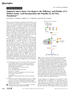 Optimal Codon Choice Can Improve the Efficiency and Fidelity of N-Methyl Amino Acid Incorporation into Peptides by In-Vitro Translation.