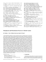 Photophysical and Photochemical Processes in Micellar Systems.