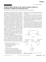 Symmetry-Based Design for the Chemoenzymatic Synthesis of Oseltamivir (Tamiflu) from Ethyl Benzoate.