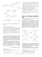Synthesis and Intramolecular 1 3 Cl H Disproportionation of Ethyl 2 2-Dichloro-2-(dimethylamino)-acetate.