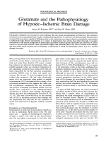 Glutamate and the pathophysiology of hypoxicЦischemic brain damage.