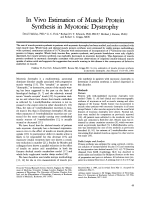 In vivo estimation of muscle protein synthesis in myotonic dystrophy.