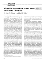 Materials ResearchЧCurrent Issues and Future Directions.