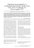 Oligoclonal immunoglobulins in cerebrospinal fluid during varicella zoster virus (VZV) vasculopathy are directed against VZV.