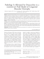 Pathology is alleviated by doxycycline in a laminin-2Цnull model of congenital muscular dystrophy.