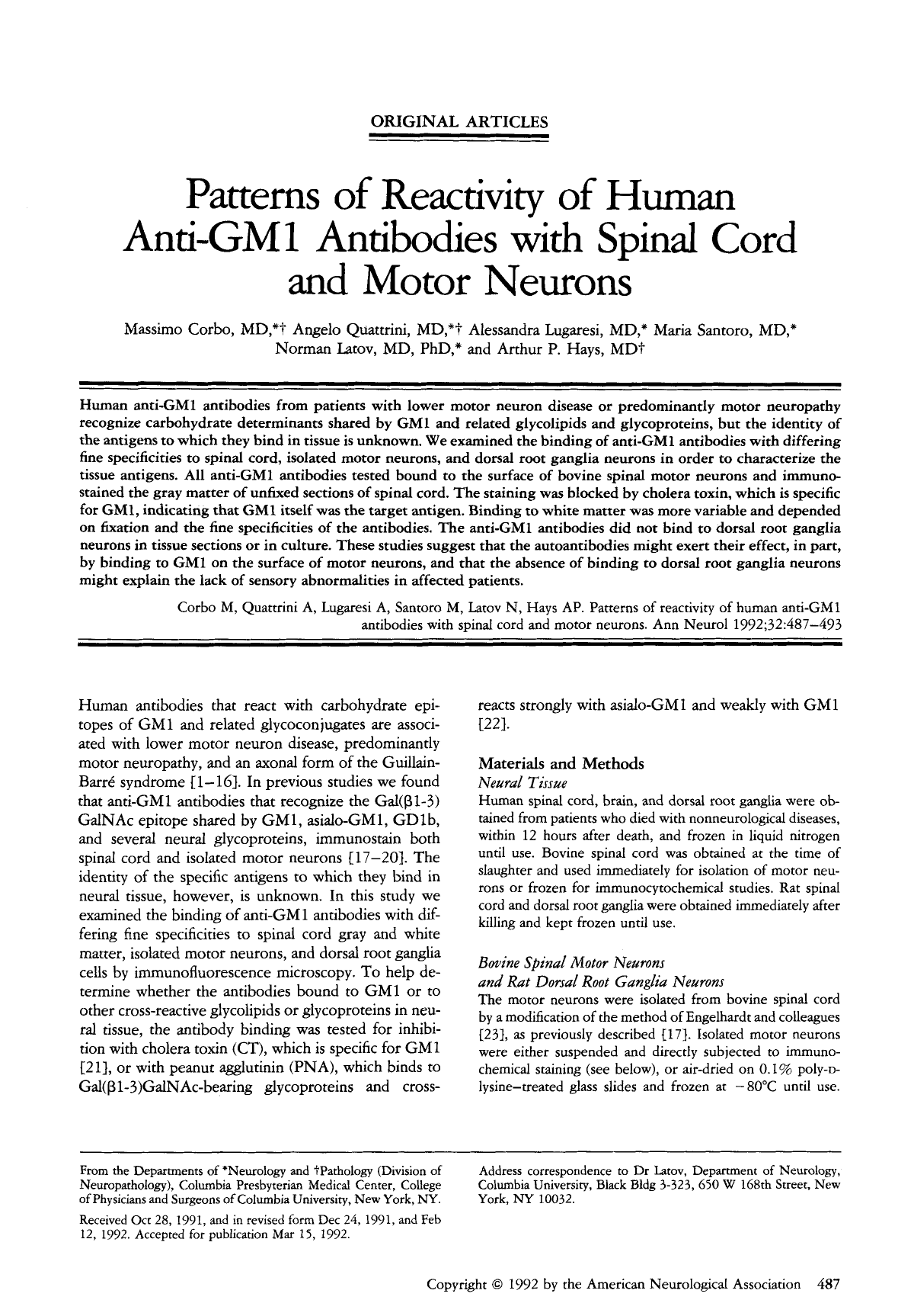 Patterns of reactivity of human anti-GM1 antibodies with spinal cord