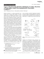 C(sp3)ЦN Bond-Forming Reductive Elimination of Amines  Reactions of Bisphosphine-Ligated Benzylpalladium(II) Diarylamido Complexes.