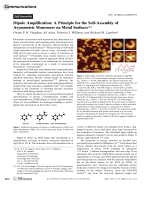 Dipole Amplification  A Principle for the Self-Assembly of Asymmetric Monomers on Metal Surfaces.
