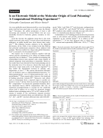 Is an Electronic Shield at the Molecular Origin of Lead Poisoning A Computational Modeling Experiment.