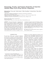 Processing  tensile  and fracture properties of injection molded Hdpe-Al2O3-HAp hybrid composites.