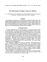 The mechanical fatigue limit for rubber.