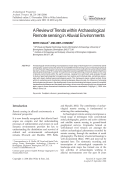 A review of trends within archaeological remote sensing in alluvial environments.