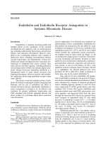 Endothelin and endothelin receptor antagonists in systemic rheumatic disease.