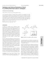 Synthesis and Antiviral Evaluation of Novel 6 В╨Ж╨Ю┬▒-Methyl-Branched Carbovir Analogues.