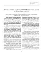 Urinary lipocalin-2 is associated with renal disease activity in human lupus nephritis.