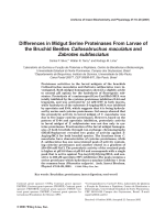 Differences in midgut serine proteinases from larvae of the bruchid beetles Callosobruchus maculatus and Zabrotes subfasciatus.