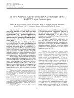 In vivo adjuvant activity of the RNA component of the SmRNP lupus autoantigen.