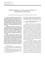 PUMA regulation and proapoptotic effects in fibroblast-like synoviocytes.