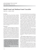 Small-vessel and medium-vessel vasculitis.