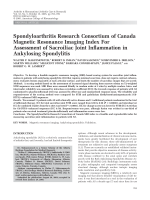 Spondyloarthritis research Consortium of Canada magnetic resonance imaging index for assessment of sacroiliac joint inflammation in ankylosing spondylitis.