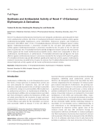 Synthesis and Antibacterial Activity of Novel 4 В╤Ц-O-Carbamoyl Erythromycin-A Derivatives.