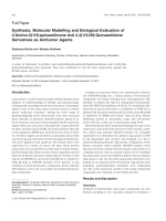 Synthesis Molecular Modelling and Biological Evaluation of 4-Amino-21H-quinazolinone and 241H3H-Quinazolidone Derivatives as Antitumor Agents.