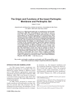 The origin and functions of the insect peritrophic membrane and peritrophic gel.