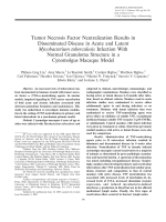 Tumor necrosis factor neutralization results in disseminated disease in acute and latent Mycobacterium tuberculosis infection with normal granuloma structure in a cynomolgus macaque model.
