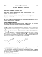 Xanthone Analogue of Geiparvarin.