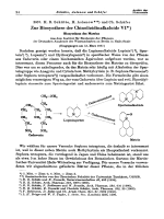 Zur Biosynthese der Chinolizidinalkaloide VI. Biosynthese des Matrins