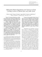 Differential matrix degradation and turnover in early cartilage lesions of human knee and ankle joints.