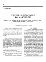 Echovirus-associated polyarthritis. report of a case with synovial fluid and synovial histologic characterization