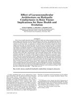 Effect of lacunocanalicular architecture on hydraulic conductance in bone tissueImplications for bone health and evolution.