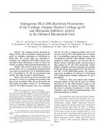 Endogenous HLADRrestricted presentation of the cartilage antigens human cartilage gp-39 and melanoma inhibitory activity in the inflamed rheumatoid joint.