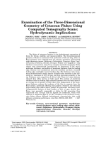 Examination of the three-dimensional geometry of cetacean flukes using computed tomography scansHydrodynamic implications.