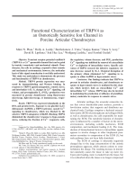 Functional characterization of TRPV4 as an osmotically sensitive ion channel in porcine articular chondrocytes.