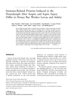Immune-related proteins induced in the hemolymph after aseptic and septic injury differ in honey bee worker larvae and adults.