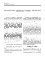 Increased collagen and aggrecan degradation with age in the joints of Timp3╨▓тВм ╨▓тВм  mice.