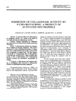 Inhibition of Collagenase Activity by N-Chlorotaurine a Product of Activated Neutrophils.