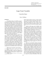 Large-vessel vasculitisUnresolved issues.