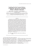Looking for the lunate sulcusA magnetic resonance imaging study in modern humans.